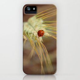Ladybug on wheat iPhone Case