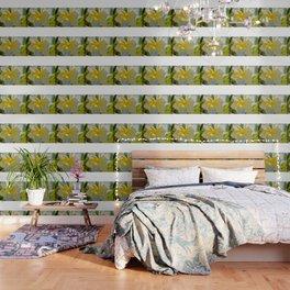 Tropical Garden3 Wallpaper
