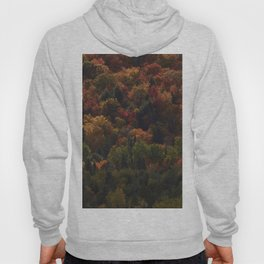Autumn in Mauricie Hoody