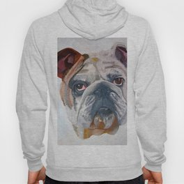 American Bulldog Portrait: Yale Mascot Hoody