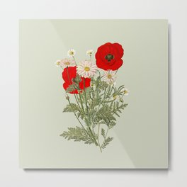 A country garden flower bouquet -poppies and daisies Metal Print