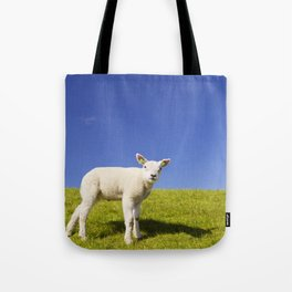 Texel lamb on the island of Texel, The Netherlands Tote Bag