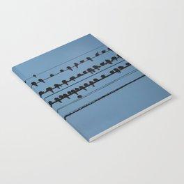 birds on a wire feeling blue Notebook