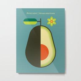 Fruit: Avocado Metal Print