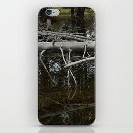 Mirror Pond iPhone Skin
