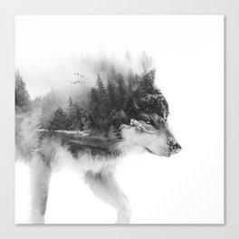 Wolf Stalking Canvas Print