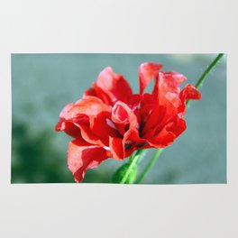 Poppy Flower Rug