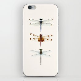 Dragonfly Collector iPhone Skin