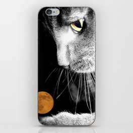 Silver Cat and Moon iPhone Skin