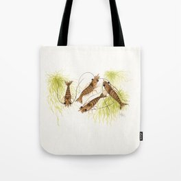 """""""Shrimp"""" by Amber Marine ~ Watercolor Painting, (Copyright 2013) Tote Bag"""
