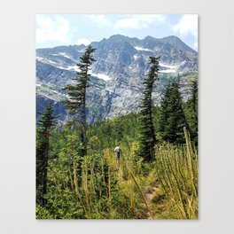 Snowshoe Peak Canvas Print