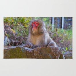 Deep Monkey Thoughts Rug