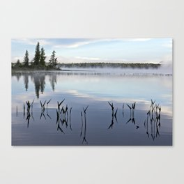 trees and weeds reflected Canvas Print