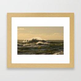 Dolphin Bay Framed Art Print