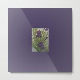 Winter Iris Metal Print