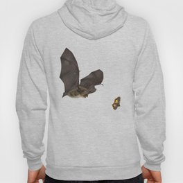 Brown Long-eared Bat Hoody