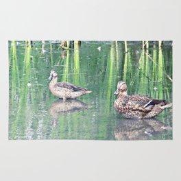 Two Ducks Rug