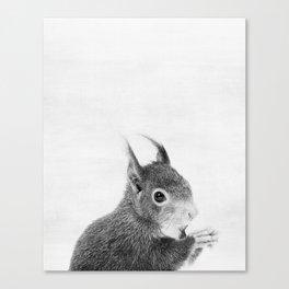 Squirrel, Animal, ZOO, Woodland, Nursery, Minimal, Modern, Wall art Art Print Canvas Print