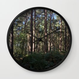 Trees Over Ferns. Rushmere Country Park, Bedfordshire UK Wall Clock