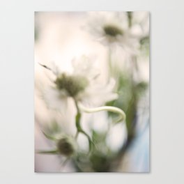 Thistle and Weed Canvas Print