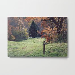 Appalachian Trail in Autumn Metal Print