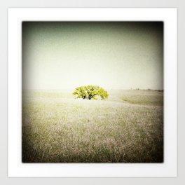 Tree, Flint Hills, Kansas Art Print