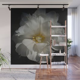 Double White Tulip by Teresa Thompson Wall Mural