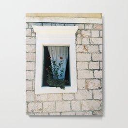 European Window Metal Print