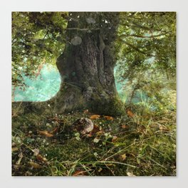 Back To My Roots Canvas Print