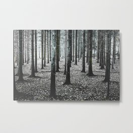 Coma forest Metal Print