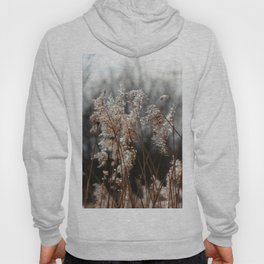 Freedom For The Soul Hoody