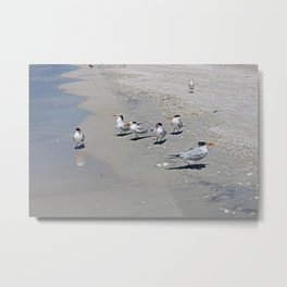 No Swimming Yet, Kids...Where IS Your Mother? Metal Print