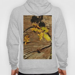 Natures Design Hoody