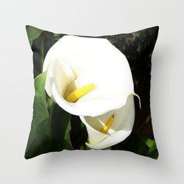 Beautiful White Calla Flowers In Bright Sunlight Throw Pillow