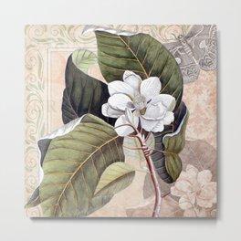 Vintage White Magnolia  Metal Print