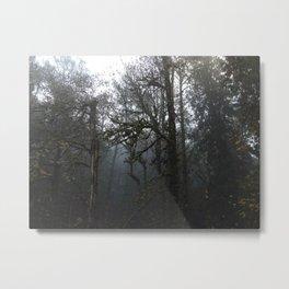 FOREST FOG Metal Print