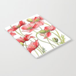 Red Poppies, Illustration Notebook