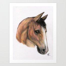 Horse head, equestrian, original art print Art Print