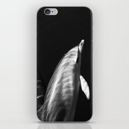 Black and white dolphins iPhone Skin