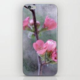 Chaenomeles Japonica iPhone Skin
