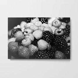 Berry Black and White Metal Print