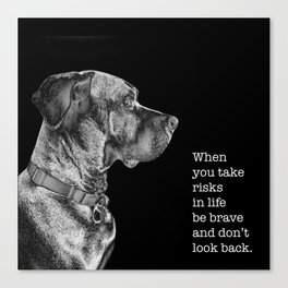 Silver Ridgeback, don't look back Canvas Print