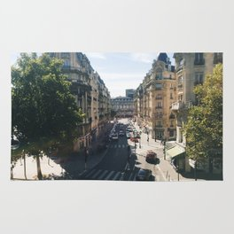 Looking Down on Paris, 12th Arrondissement Rug