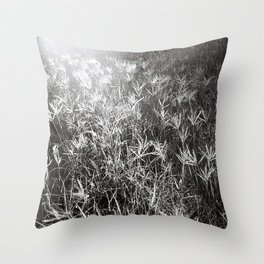 Doom & Gloom #3 Throw Pillow