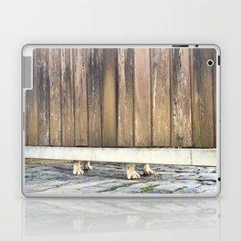 Paws Of A Waiting Bulldog Laptop & iPad Skin