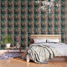 Sfortuna Wallpaper