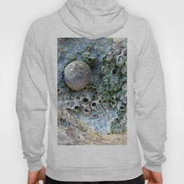 Nacre rock with sea snail Hoody