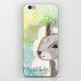 Eishörnchen iPhone Skin