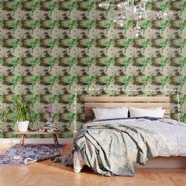 Odd Boxer Wallpaper