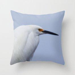 Modeling Assignment Throw Pillow